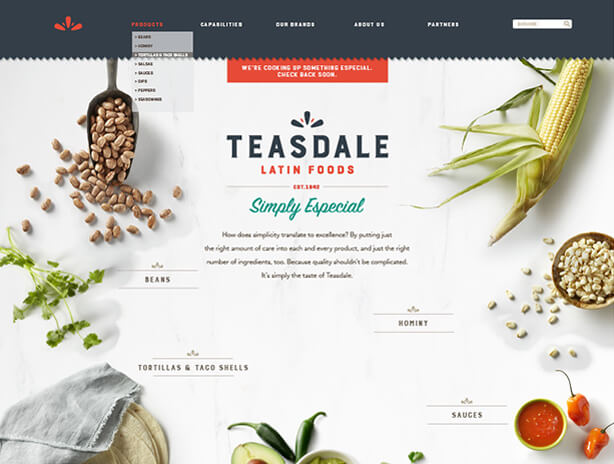 Teasdale website